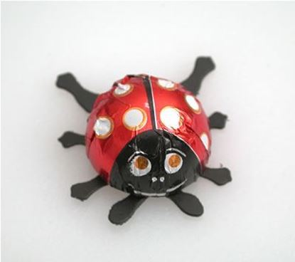 Picture of Chocolate Ladybugs Bugs