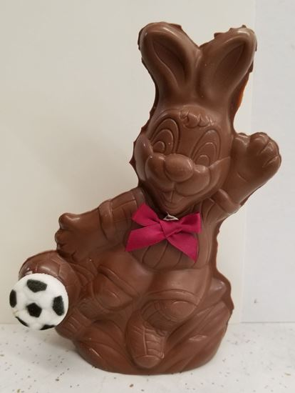 Picture of Soccer Ball Bunny