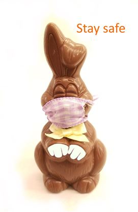 Picture of Covid 19 Masked Bunny